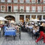 Terrazas en la Plaza Mayor. MADRID. España