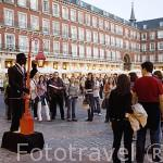 Mimos en la Plaza Mayor. MADRID. España