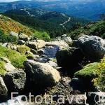 Paisaje desde la montaña de Peñalara. Sierra de Guadarrama. Comunidad de Madrid. España
