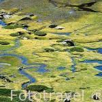Charcas de agua cerca de la Laguna de Peñalara y senderistas. Parque Natural de Peñalara. Sierra de Guadarrama. Comunidad de Madrid. España