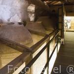 Museo Etnografico del pueblo de NUEVO BAZTAN. Antigua bodega para almacenar vino. Comunidad de Madrid. España