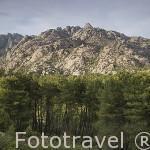 Formaciones rocosas en el Parque Natural de la Pedriza de MANZANARES EL REAL. Sierra de Guadarrama. Comunidad de Madrid. España