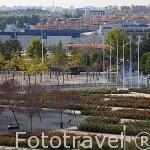 Parque Juan Carlos I. Campo de las Naciones. Madrid. España