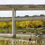 Practicando kayak en el canal de agua. Parque Juan Carlos I. Campo de las Naciones. Madrid. España