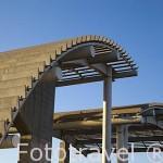 La Estufa Fria. Estructura moderna en hormigón. Parque Juan Carlos I. Campo de las Naciones. Madrid. España