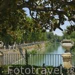 Jardin de la Isla junto al rio Tajo. Palacio de Aranjuez. ARANJUEZ. Comunidad de Madrid. España Spain