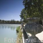 Paseo arbolado junto al rio Tajo en el jardin de la Isla. Palacio de ARANJUEZ. Comunidad de Madrid. España. Spain