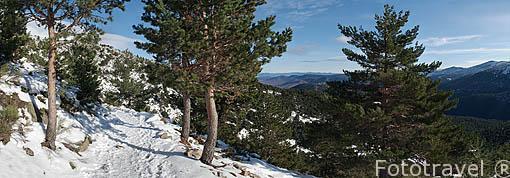 Peñalara. Parque Nacional. Sierra de Guadarrama. Comunidad de Madrid. España