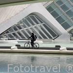 En bicicleta bajo el Palacio de las Artes. Ciudad de las Artes y las Ciencias. Santiago Calatrava. VALENCIA. España
