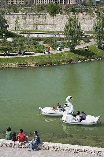 Patines con forma de cisne en el estanque del parque de Cabecera. VALENCIA. España