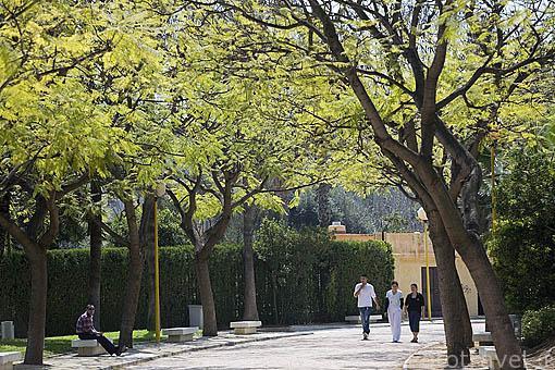 Parque de Benicalap. VALENCIA. España