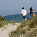 Dunas y playa de El Saler. VALENCIA. España