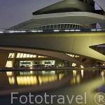 Detalle. Palacio de las Artes. Arquitecto Santiago Calatrava. Ciudad de las Artes y las Ciencias. VALENCIA. España