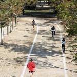 Pistas habilitadas para practicar deportes en el antiguo cauce del rio Turia. VALENCIA. España