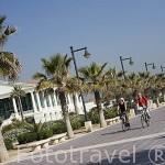 El hotel Las Arenas y ciclistas en el paseo maritimo junto a la playa de El Cabañal. VALENCIA. España