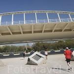 Deportistas bajo el puente de la Peineta, de Santiago Calatrava. Antiguo cauce del rio Turia. VALENCIA. España