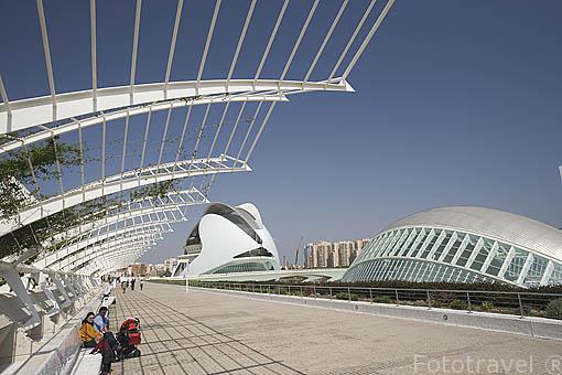 Ciudad de las Artes y las Ciencias. Arquitecto Santiago Calatrava. VALENCIA. España