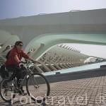 Edificio del Museo de las Ciencias. Ciudad de las Artes y las Ciencias. Arquitecto Santiago Calatrava. VALENCIA. España