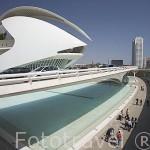El edificio del Palacio de las Artes. Arquitecto Santiago Calatrava. VALENCIA. España