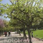 El parque de Benicalap. VALENCIA. España