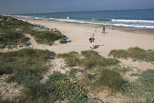Playa y dunas de El Saler. Al sur de la ciudad de VALENCIA. España