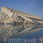 Museo de las Ciencias. Arquitecto Santiago Calatrava. Ciudad de las Artes y las Ciencias. VALENCIA. España