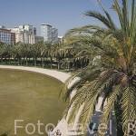Vista de una fuente y palmeras desde el puente del Mar. VALENCIA. España
