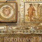 Mosaico de la Medusa. s.II-III d.C. Museo Nacional Arqueologico. Plaza del Rei. TARRAGONA. Ciudad Patrimonio de la UNESCO. España