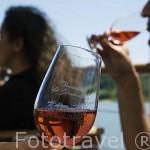 Degustación de vino rosado de la bodega Domaine des Genaudieres. Rio Loira cerca del pueblo de OUDON. Valle del Loira. Francia