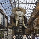 """El Gran Elefante. 12mts de alto, 8mts de largo y 50 tn.Acero y madera. Carcasa hidraulica irrigada por 4 tn de aceite. Posee motor de 450 cv. """"Les Machines d´Ile"""". Ciudad de NANTES. Región Pays de la Loire. FRANCIA. France"""