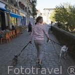 Mujer paseando a sus perros en rue Premion. Ciudad de NANTES. Región Pays de la Loire. FRANCIA. France