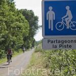 Pista ciclista entre las poblaciones de OUDON y ANCENIS. Valle del Loira. Francia