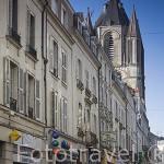 Calle rue de Lices y torre de St- Aubin (s.XII). Ciudad de ANGERS. Región de Pays de Loire. Francia. France