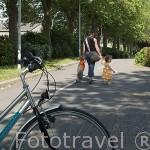 Pista para bicicletas y ciclistas cerca de ANCENIS. Región Pays de Loire. Francia - France
