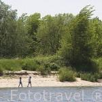 Playa en el rio Loira cerca de OUDON. Pays des Loire. Francia. France