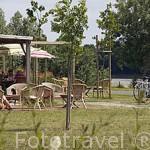 Restaurante con terraza junto al rio Loira, La Croisette. En BEHUARD. Región de Pays de Loire. Francia. Franc
