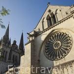 Roseton. Catedral de Saint Maurice. Ciudad de ANGERS. Región de Pays de Loire. Francia. France
