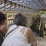 "Gran Elefante.12mts alto, 8mts largo, 50 tn.Acero, madera. Carcasa hidraulica irrigada 4 tn aceite. Motor 450 cv. ""Les Machines d´Ile"". NANTES. Pays de la Loire. FRANCIA. France"