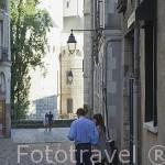 Pareja cerca del castillo. Ciudad de NANTES. Región Pays de la Loire. FRANCIA. France