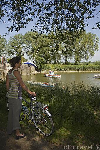 """Ciclista y detras el barco """"Bateau Mou"""" o """"Misconceivable"""" del artista Erwin Wurm. Situado en el Canal de la Martinière. Pays des Loire. Francia. France"""