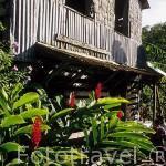 La Maison du Cafe (Casa del Cafe) y antiguas maquinarias. En VIEUX HABITANTS. Basse Terre. Caribe. Isla de Guadalupe. Francia