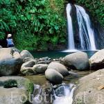 Cascada de les Ecrevisses. Parque Nacional de Guadalupe. Basse Terre. Isla de Guadalupe. Francia