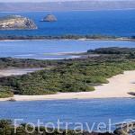 Playa naturista, salinas y playa Anse a la Gourde al fondo.Cerca de de POINTE A CHATEAUX. Isla de Guadalupe. Caribe. Francia