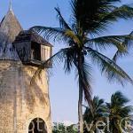 Antiguo molino para moler la caña de azucar. Molino des Basses. (s.XIX), cerca de CAPESTERRE. Isla de Marie Galante. Pertenece a las islas de GUADALUPE. Francia