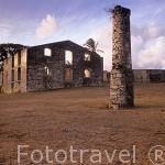 Ruinas de antigua plantación de caña de azucar habitation Murat. Fue las más grande de todo Guadalupe(207 esclavos). Isla de Marie Galante. Pertenece a las islas de GUADALUPE. Francia