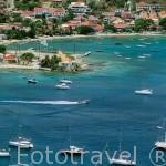 Embarcaciones de pescadores en la isla de Les Saintes. Pertenece a las islas de GUADALUPE. Caribe. Francia
