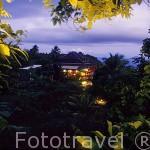 """Hotel """"Les Petites Saintes"""". Al sur de la isla de Guadalupe. Caribe. Francia"""