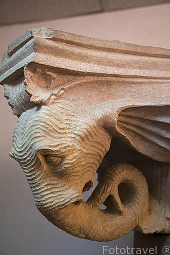 Cabeza de elefante en la terminación de un capitel. Museo de las ruinas de PETRA. Patrimonio de la Humanidad, UNESCO. Jordania