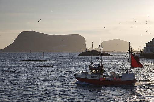 Barcos pesqueros en la isla de ROST. Archipielago de las Lofoten. Circulo polar artico. Noruega. / Norway