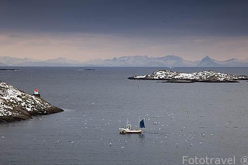 Barcos pesqueros cerca de HENNINGSVAER. Isla de Austvagoya. Archipielago de las Lofoten. Circulo Polar Artico. Noruega. / Norway